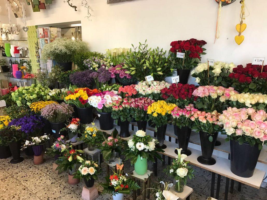 Blumen in Dinslaken